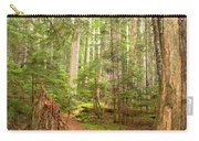 Cheakamus Lake Path Carry-all Pouch