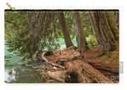 Cheakamus Lake Rainforest - British Columbia Carry-all Pouch