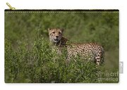 Cheetah   #0090 Carry-all Pouch