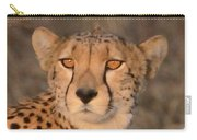 Cheetah Gaze At Sunset Carry-all Pouch