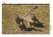 Cheetah Juveniles Playing Carry-all Pouch