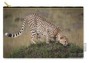 Cheetah On Termite Mound Carry-all Pouch