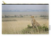 Cheetah Perched On A Mound Carry-all Pouch