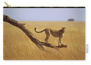 Cheetah Standing On Dead Tree Carry-all Pouch