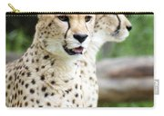 Cheetah's 05 Carry-all Pouch