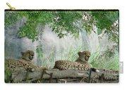 Cheetahs-120 Carry-all Pouch