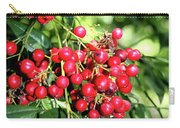 Cherry Laurel  Carry-all Pouch