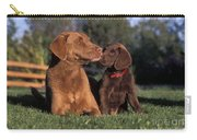 Chesapeake Bay Retrievers Carry-all Pouch