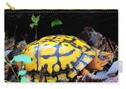 Chesapeake Box Turtle Carry-all Pouch