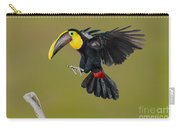 Chestnut-mandibled Toucan Landing Carry-all Pouch