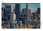 Chicago Highways 05 Carry-all Pouch