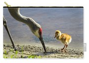 Chick At The Lake Carry-all Pouch