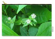 Chickweed Trio Carry-all Pouch