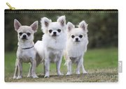 Chihuahua Dogs Carry-all Pouch