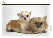 Chihuahua Puppy Dogs Carry-all Pouch