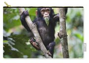 Chimpanzee Baby Eating A Leaf Tanzania Carry-all Pouch