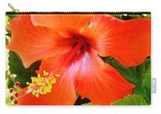 China Camp Hibiscus Carry-all Pouch