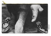 China: Lily Foot, C1900 Carry-all Pouch