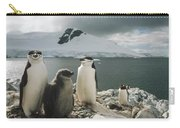 Chinstrap Penguins With Chick Paradise Carry-all Pouch