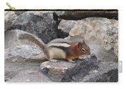Chipmunk Tones Carry-all Pouch