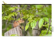 Chipmunk Shares Fence Post Carry-all Pouch