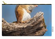 Chipmunk Sunning Carry-all Pouch