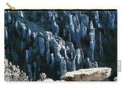 Chiricahua Pinnacles D Carry-all Pouch