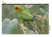 Chiriqui Conure 2 - Dp Carry-all Pouch