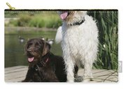Chocolate And Cream Labradoodles Carry-all Pouch