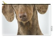 Chocolate Harlequin Dachshund Carry-all Pouch
