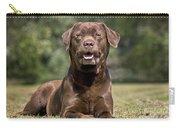 Chocolate Labrador Dog Carry-all Pouch