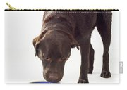 Chocolate Labrador Drinking Carry-all Pouch