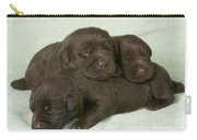 Chocolate Labrador Puppies Carry-all Pouch