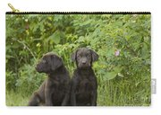 Chocolate Labrador Retriever Puppies Carry-all Pouch