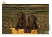 Chocolate Labrador Retriever Pups Carry-all Pouch