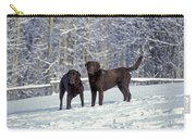 Chocolate Labrador Retrievers Carry-all Pouch