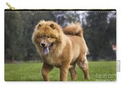 Chow Chow Dog Carry-all Pouch