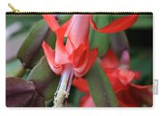 Christmas Cactus 1 Carry-all Pouch