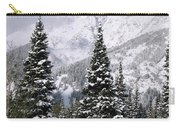 Christmas Card Perfect Carry-all Pouch