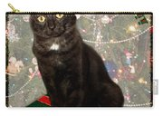 Christmas Cat Carry-all Pouch by Adam Romanowicz