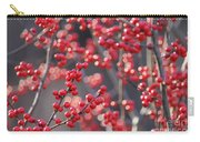 Christmas Sparkles Carry-all Pouch
