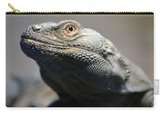 Chuckwalla Carry-all Pouch