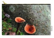 Cinnamon Polypore  Carry-all Pouch