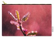 Circles From Nature - C33st04a Carry-all Pouch