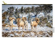 Circling The Wagons Carry-all Pouch