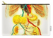 Circulatory System Carry-all Pouch