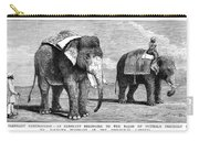 Circus Elephants, 1884 Carry-all Pouch