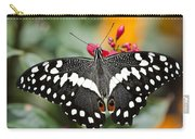 Citrus Swallowtail Butterfly  Carry-all Pouch