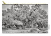 City Park Giants - Paint Bw Carry-all Pouch