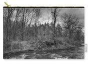 Clarksburg Falls 1833 Carry-all Pouch